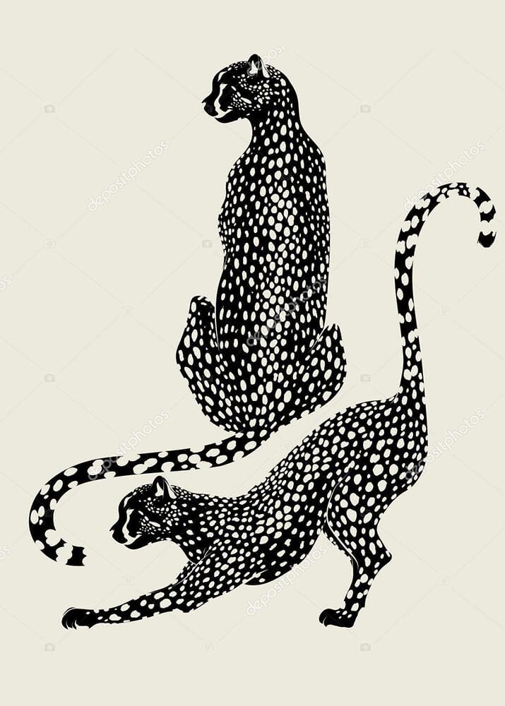 Постер Гепарды  - фото